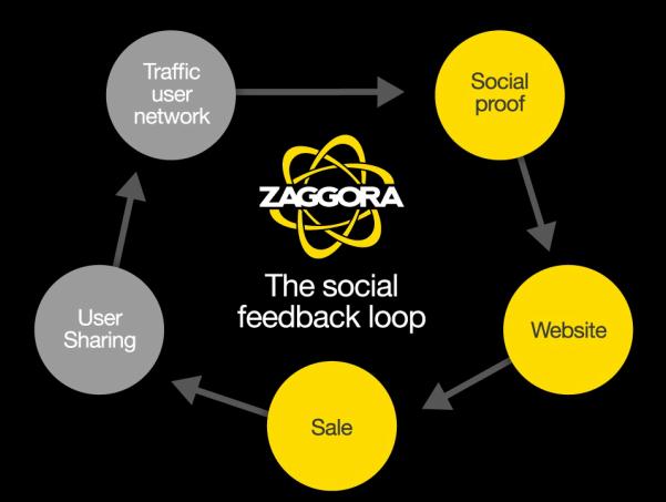 social feedback loop